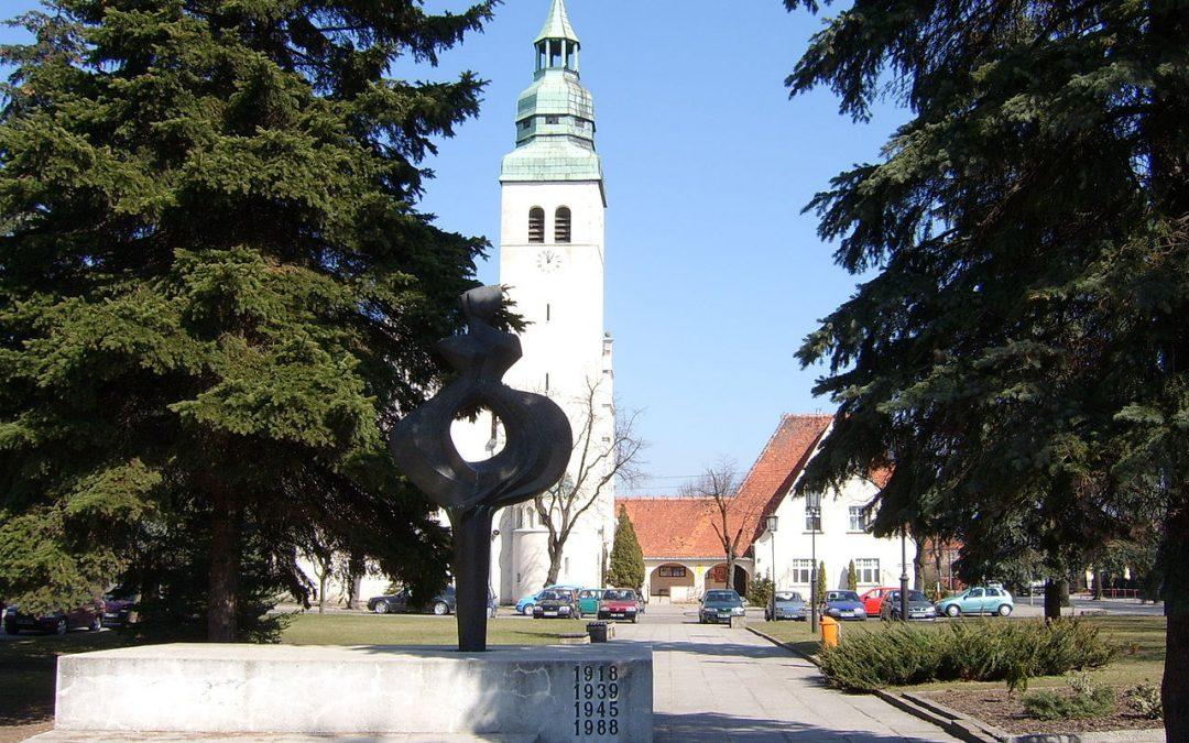 Warsztaty dla trenerów – 19 czerwca w Luboniu
