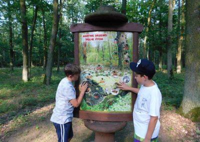 Wielkopolski Park Narodowy 129