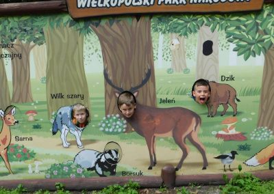 Wielkopolski Park Narodowy 51