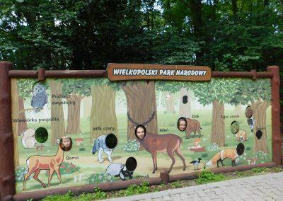 Wielkopolski Park Narodowy 52