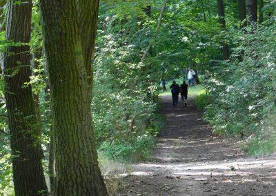 Wielkopolski Park Narodowy 75